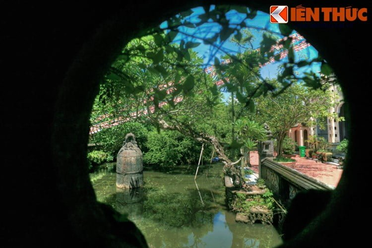 Ky la chuong co 9 tan nam giua ho nuoc o Nam Dinh-Hinh-4