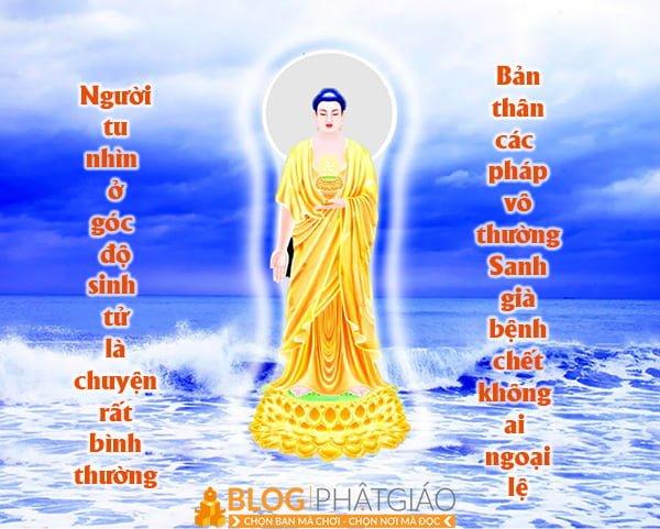 Câu A Di Đà Phật nói lên điều gì? 2
